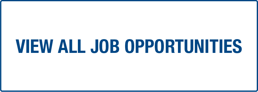 View All Job Opportunities Button